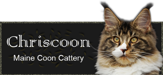 Chriscoon Cattery